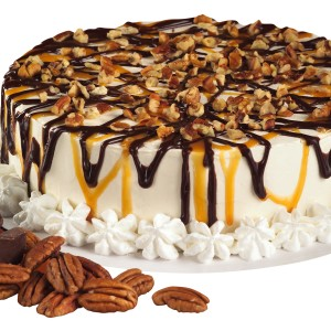 Turtle Ice Cream Cake