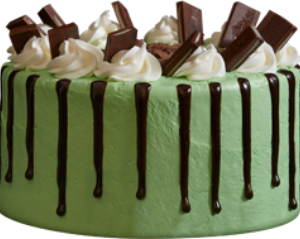Mint Chocolate Meltdown Ice Cream Cake