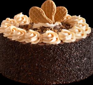 Peanut Butter Chocolate Overload Ice Cream Cake
