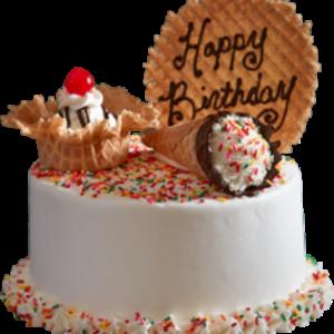 Raving Craving Sprinkle Ice Cream Cake